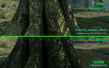 HD Trees